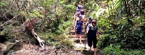 Trekking at Bach Ma National Park