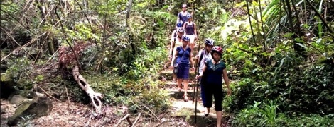 Trekking at Bach Ma National Park